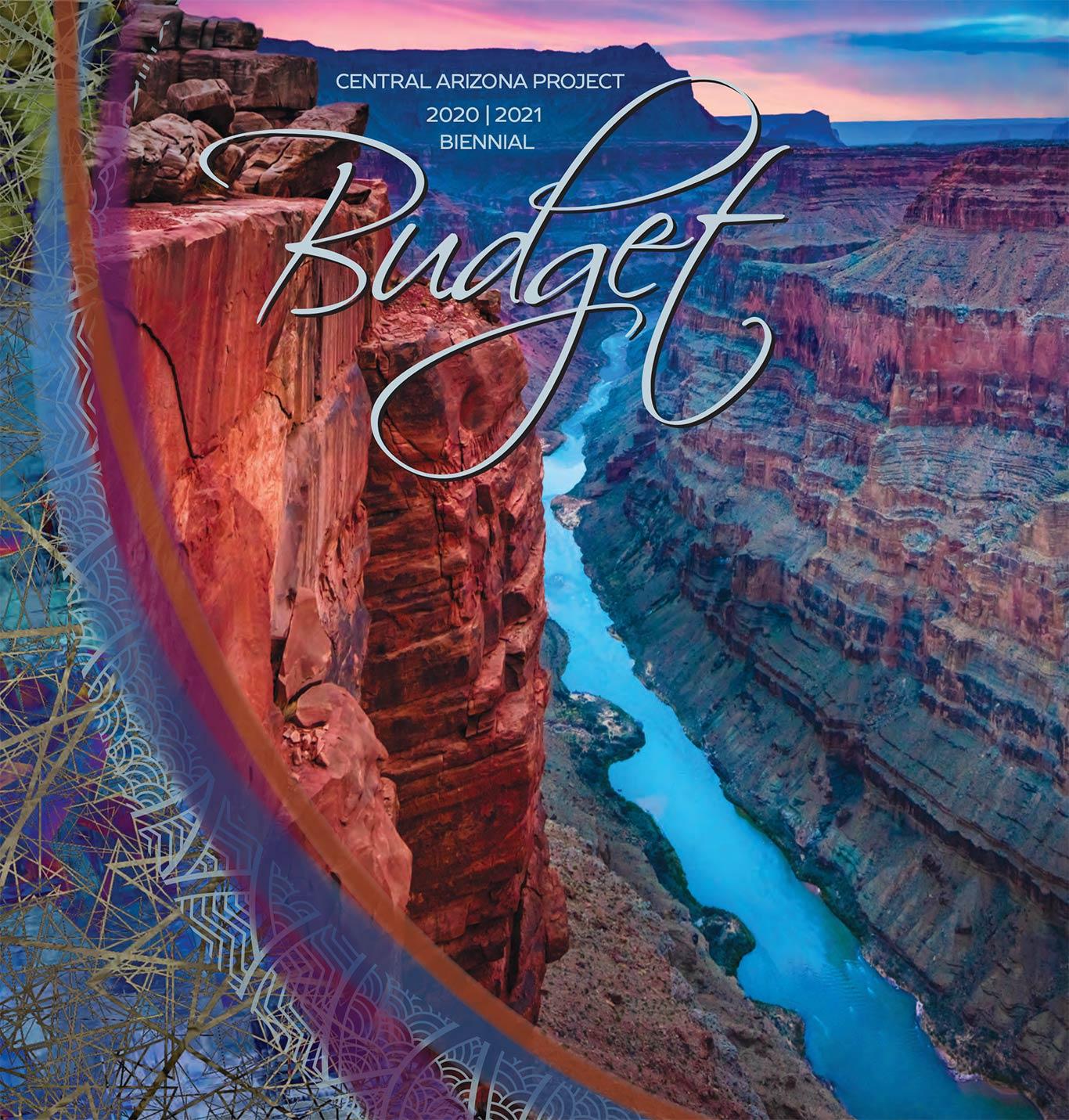 2020-2021 CAP Budget Cover