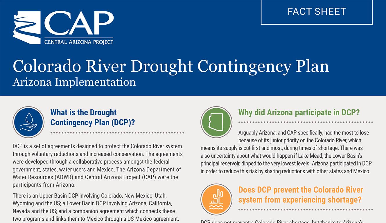 CAP DCP Factsheet